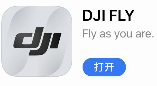 DJI FLY v1.1.10,飞友传闻Mini图传得到强化