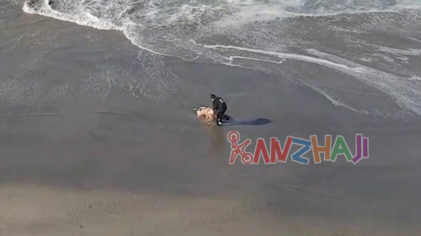 无人机飞手从大浪中救出女子,返航中录下视频