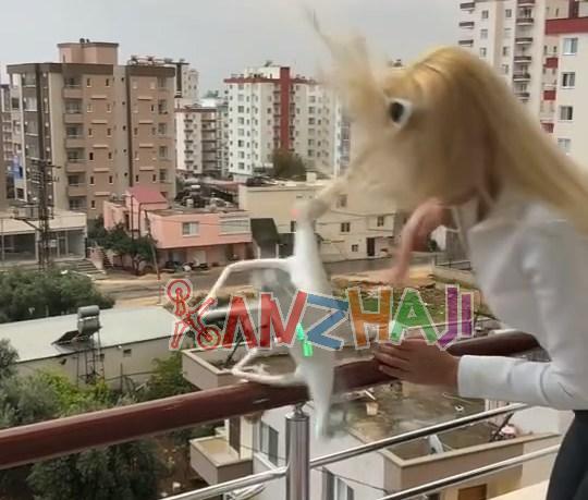 精灵4吊礼物送美女 误操作打脸真心疼~